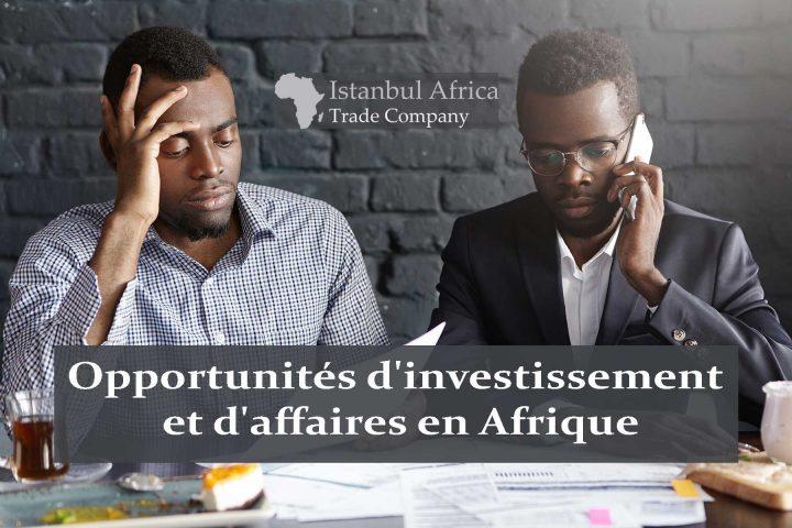Top 25 des opportunités d'investissement et d'affaires en Afrique