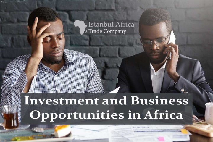 Top 25 Investment and Business Opportunities in Africa