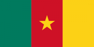 africa country flag